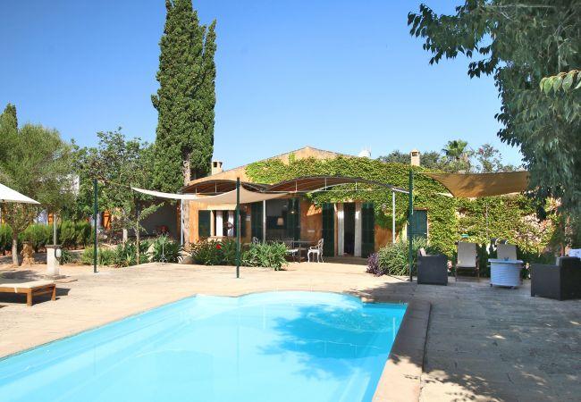 Außenansicht und Pool der Finca Sa Portassa in Porreres