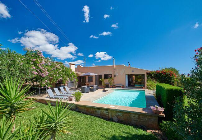 Pool und Garten der Finca