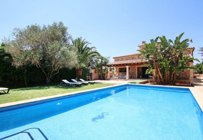 Pool und Liegen der Finca Casa Brava in Santanyi