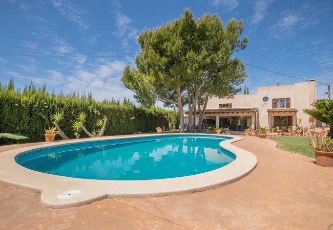 Außenansicht und Pool der Finca Can Vicenz in Sa Pobla