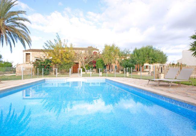 Pool und Terrasse der Wohnung Rafal Nou Suite in der Finca Rafal Nou bei Manacor