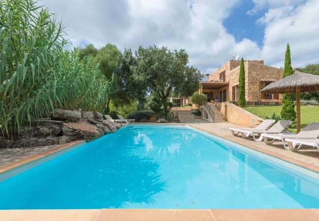 Großer Pool mit Liegeplätzen der Finca Aleli bei Arta