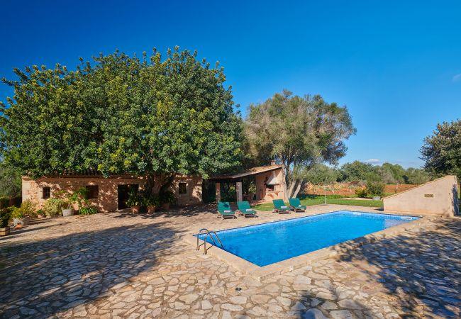 Garten mit Pool und Veranda der Finca Els Ermassos bei Felanitx
